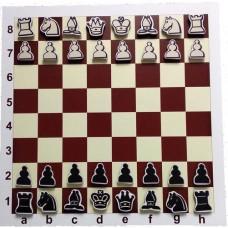 Шахи на магнітному килимку